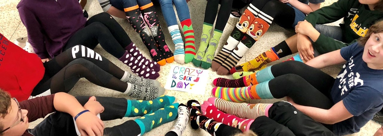 Fassett Sock Day